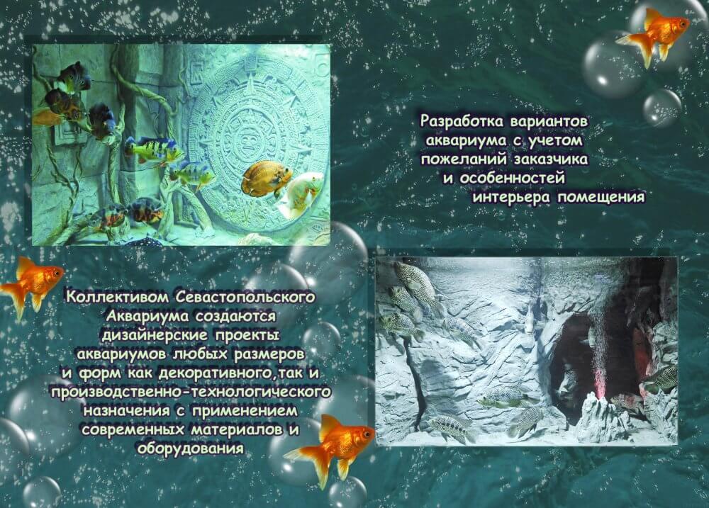 aqva1_1000x717