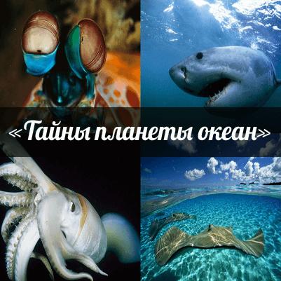 Уникальный проект «Тайны планеты Океан» для организованных групп школьников