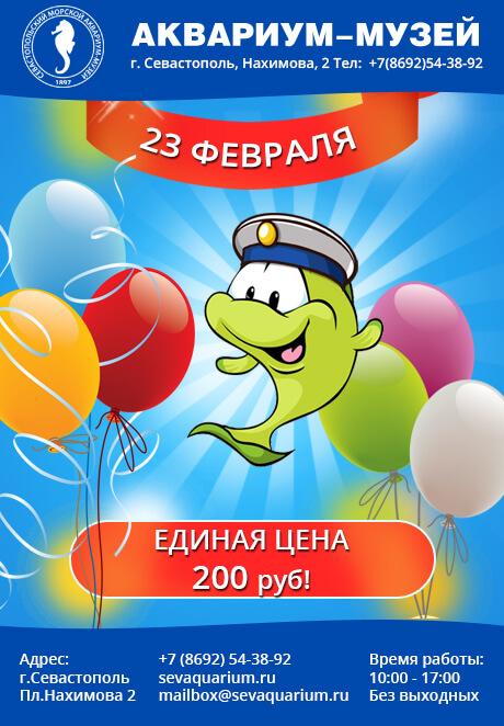 23 February poster