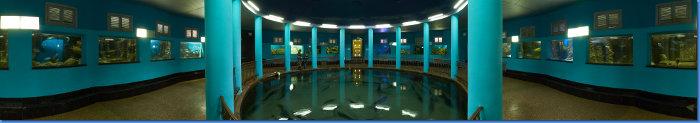 aquarium_zal2_360s