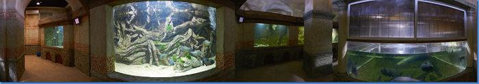 aquarium_zal3_360s
