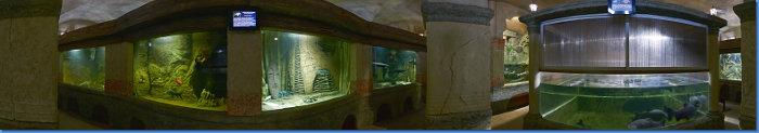 aquarium_zal3b_360s