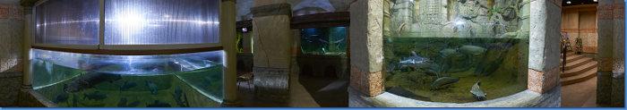 aquarium_zal3v_360s