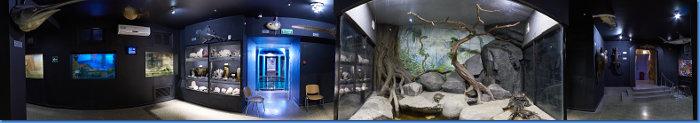 aquarium_zal4_360s