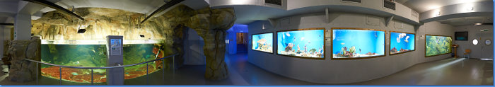 aquarium_zal5_360s