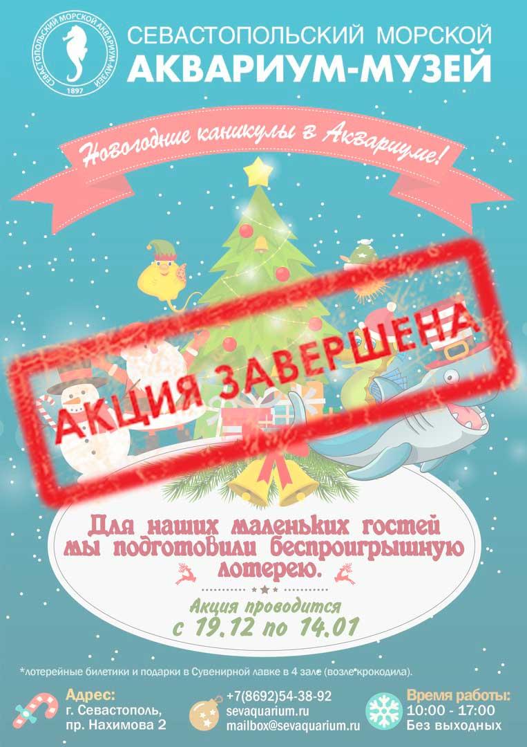 С 19 декабря по 14 января - Новогодняя лотерея!