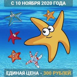 Акция единая цена 300 рублей